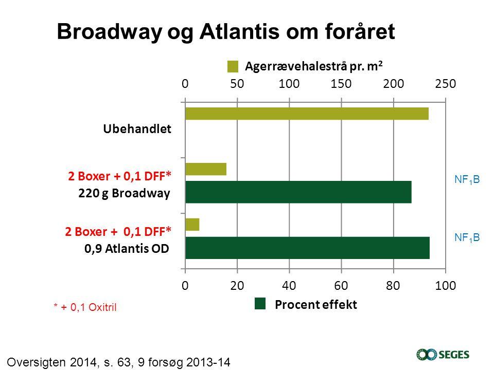 Broadway og Atlantis om foråret
