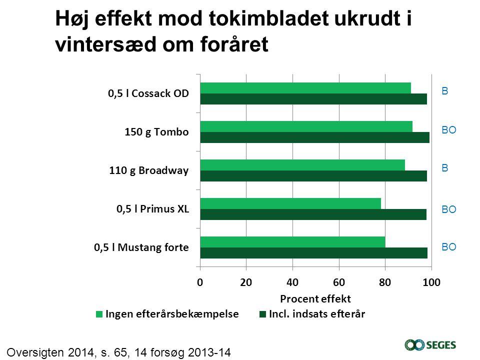 Høj effekt mod tokimbladet ukrudt i vintersæd om foråret