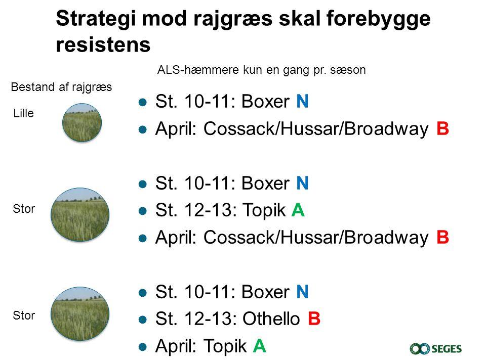 Strategi mod rajgræs skal forebygge resistens