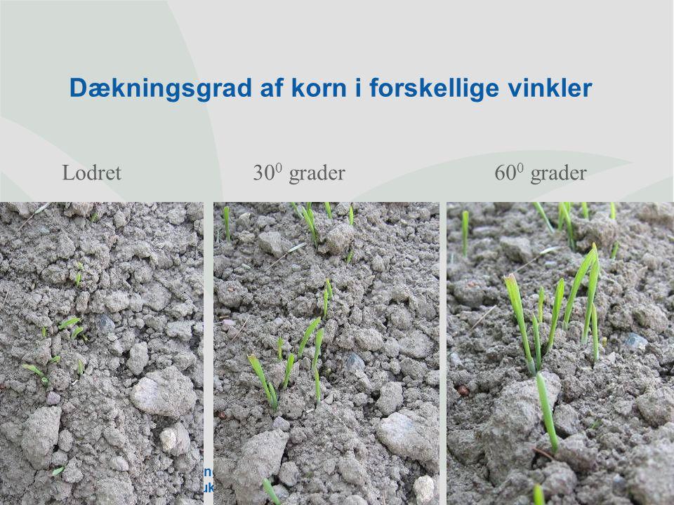 Dækningsgrad af korn i forskellige vinkler