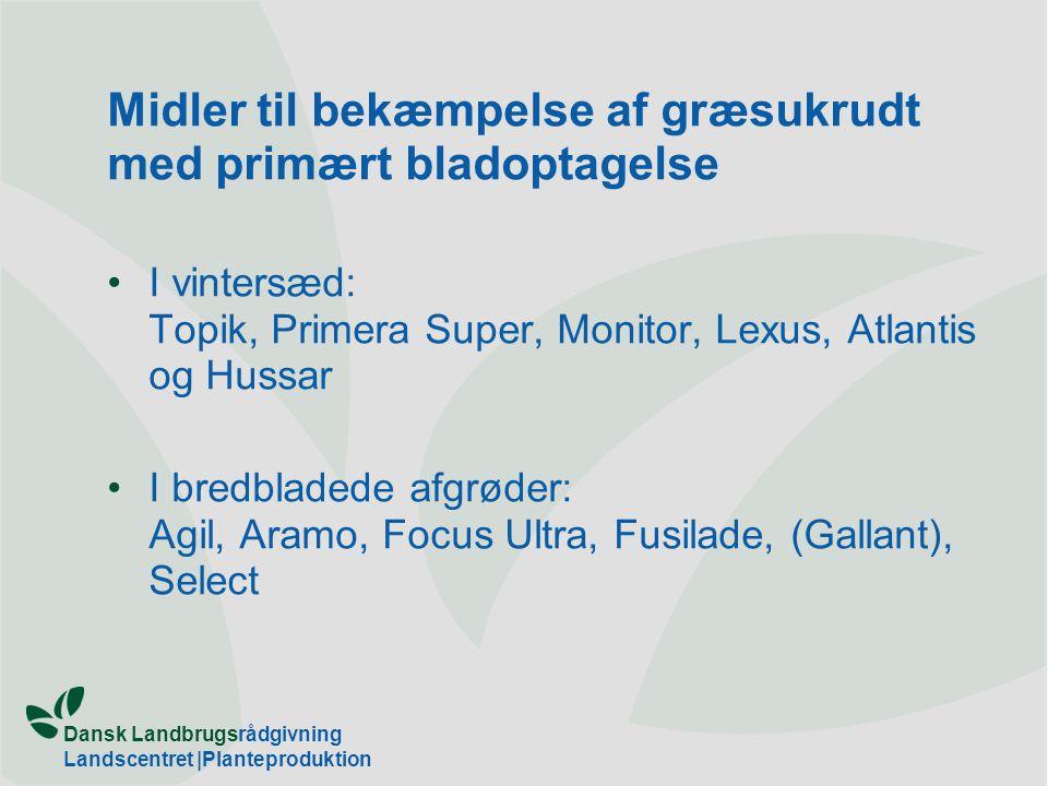 Midler til bekæmpelse af græsukrudt med primært bladoptagelse