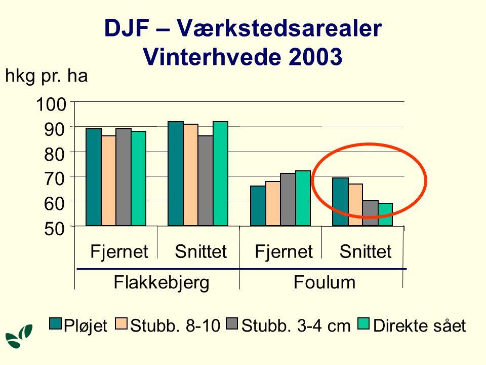 DJF – Værkstedsarealer Vinterhvede 2003