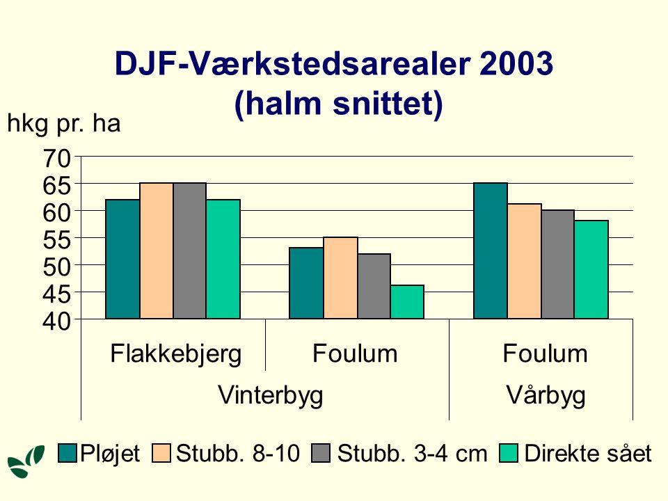 DJF-Værkstedsarealer 2003 (halm snittet)