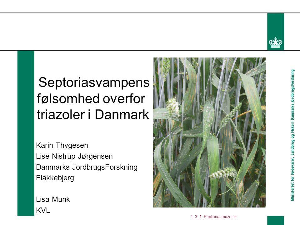 Septoriasvampens følsomhed overfor triazoler i Danmark