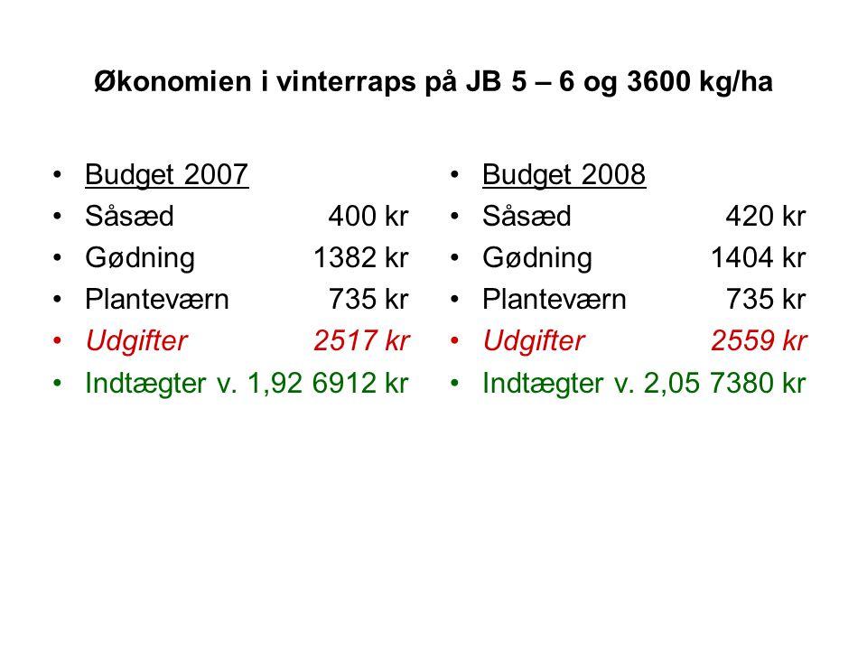 Økonomien i vinterraps på JB 5 – 6 og 3600 kg/ha
