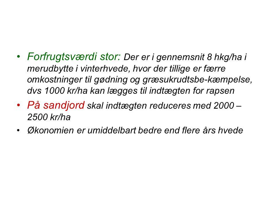 På sandjord skal indtægten reduceres med 2000 – 2500 kr/ha