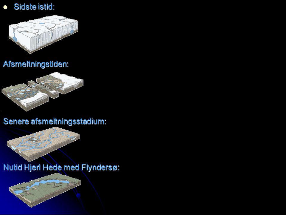 Sidste istid: Afsmeltningstiden: Senere afsmeltningsstadium: Nutid Hjerl Hede med Flyndersø: