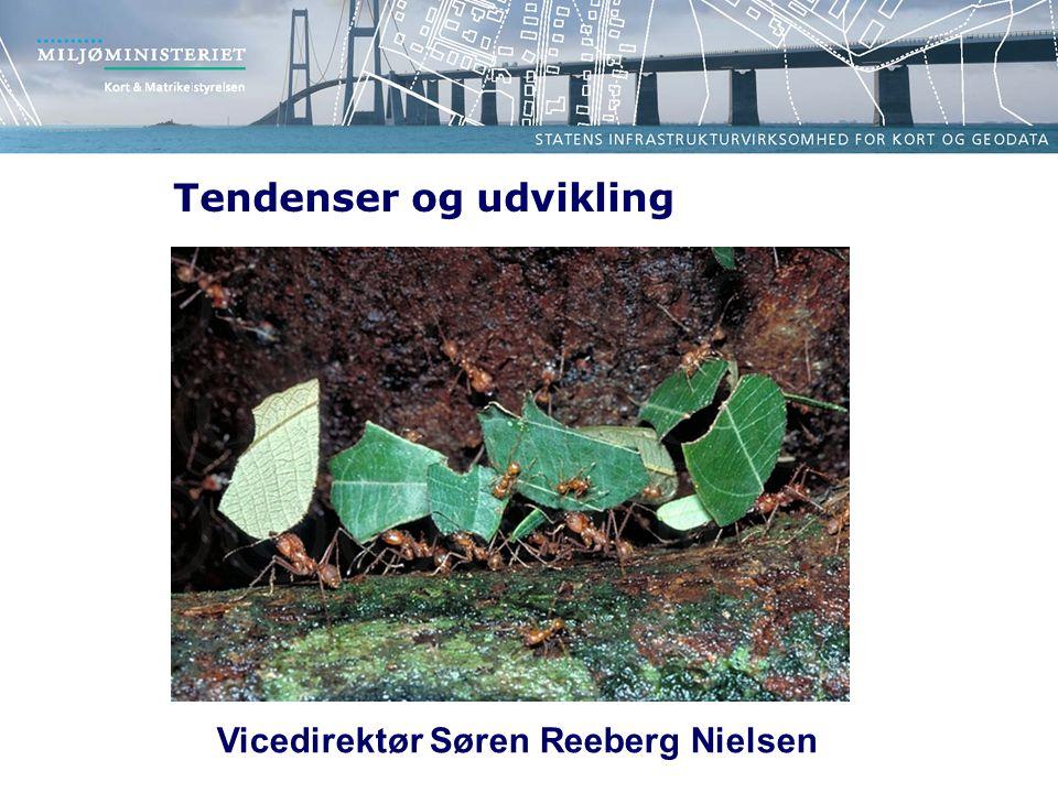 Vicedirektør Søren Reeberg Nielsen
