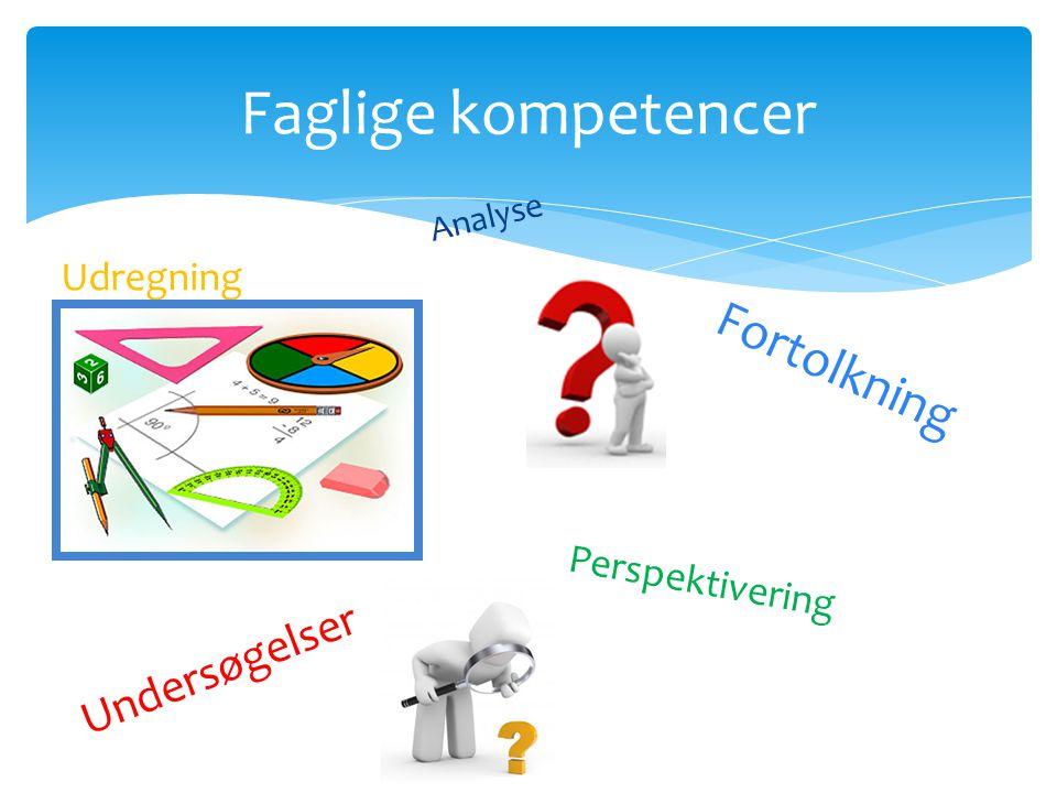 Faglige kompetencer Fortolkning Undersøgelser Udregning