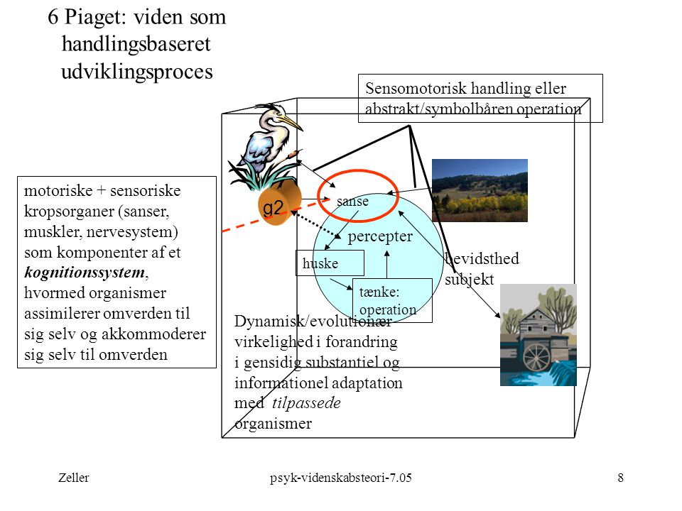 6 Piaget: viden som handlingsbaseret udviklingsproces