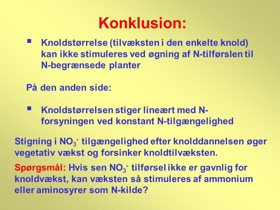 Konklusion: Knoldstørrelse (tilvæksten i den enkelte knold) kan ikke stimuleres ved øgning af N-tilførslen til N-begrænsede planter.