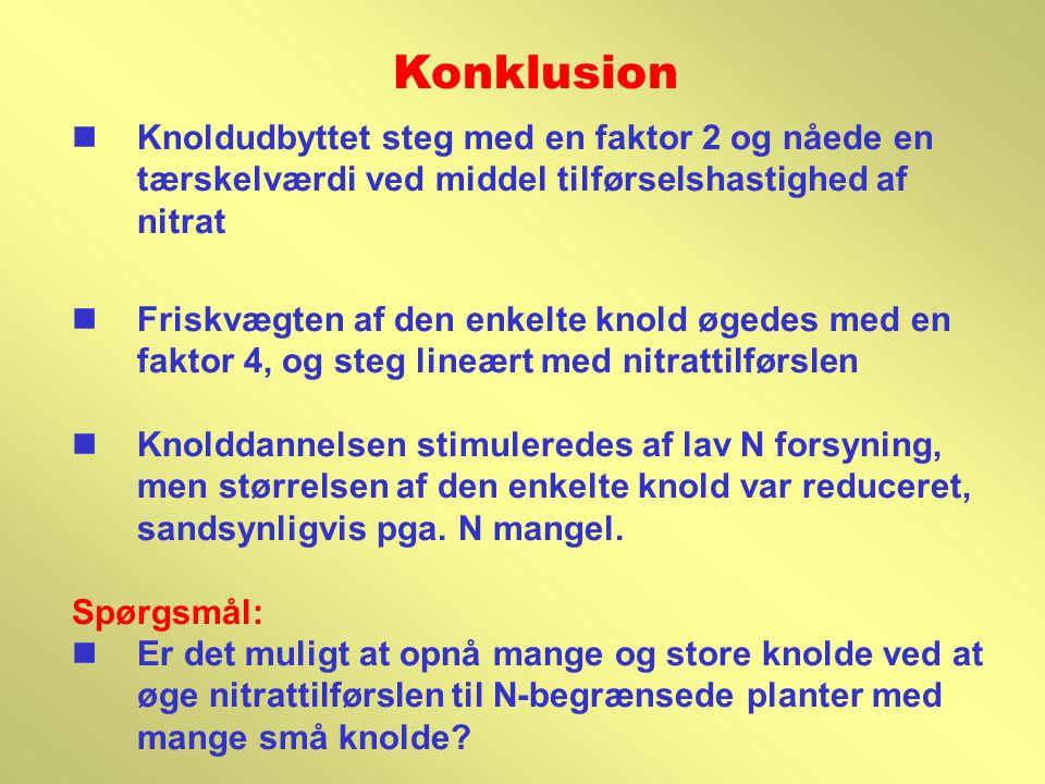 Konklusion Knoldudbyttet steg med en faktor 2 og nåede en tærskelværdi ved middel tilførselshastighed af nitrat.