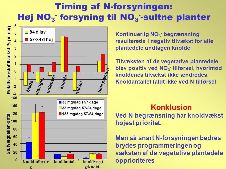 Timing af N-forsyningen: Høj NO3- forsyning til NO3--sultne planter