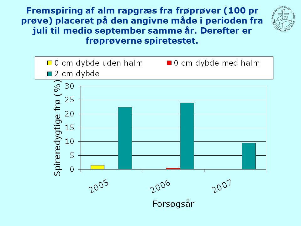 Fremspiring af alm rapgræs fra frøprøver (100 pr prøve) placeret på den angivne måde i perioden fra juli til medio september samme år.