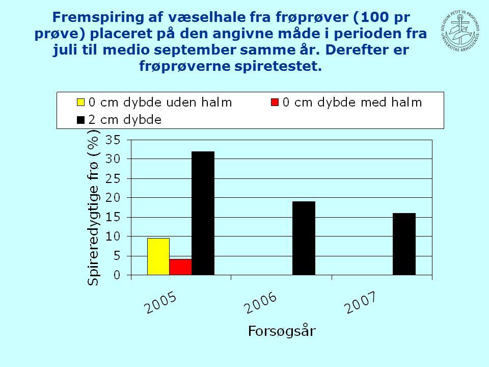 Fremspiring af væselhale fra frøprøver (100 pr prøve) placeret på den angivne måde i perioden fra juli til medio september samme år.