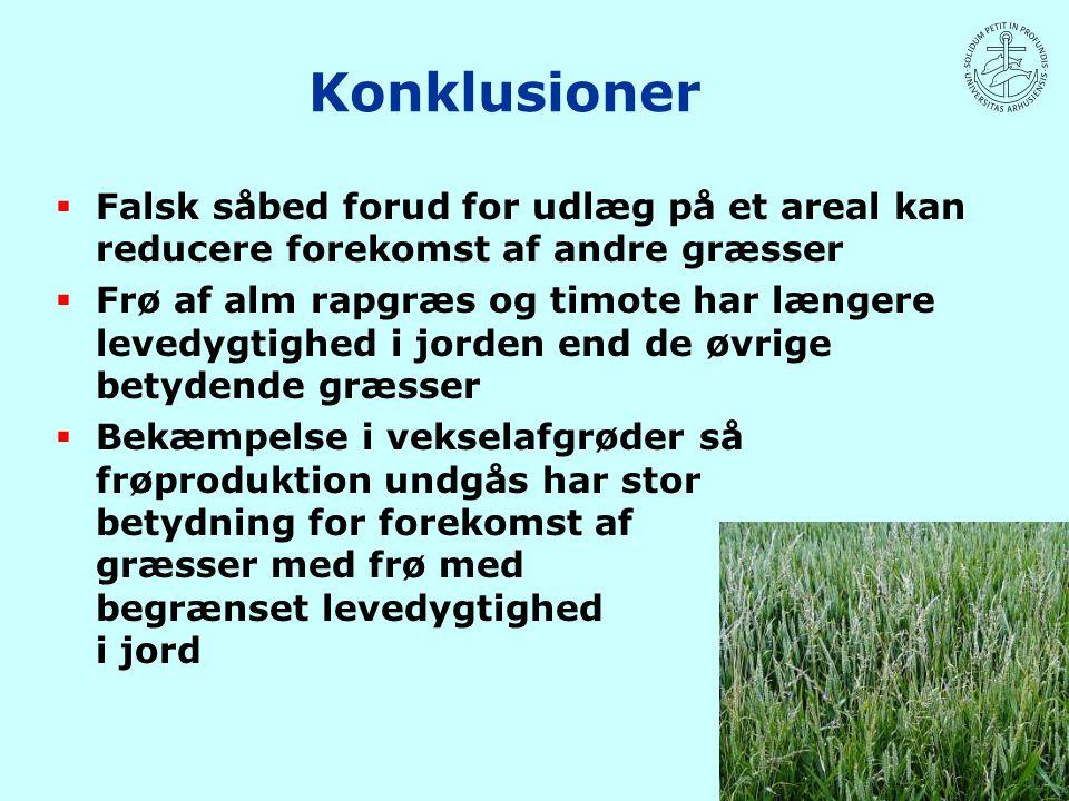 Konklusioner Falsk såbed forud for udlæg på et areal kan reducere forekomst af andre græsser.