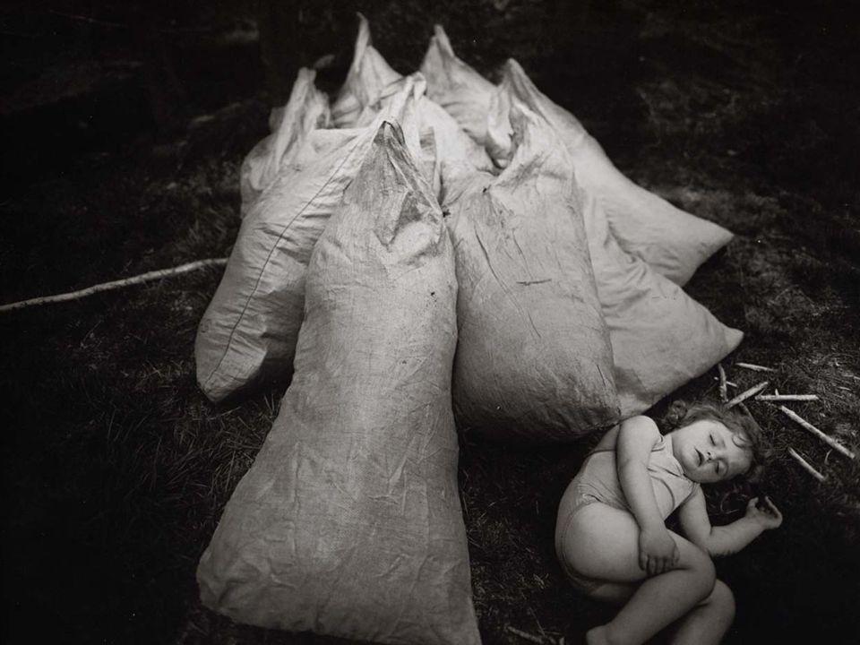 Virginia Asleep, 1988