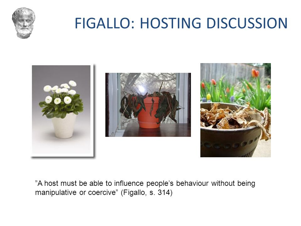 FIGALLO: HOSTING DISCUSSION