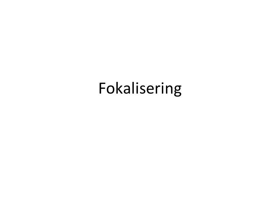 Fokalisering