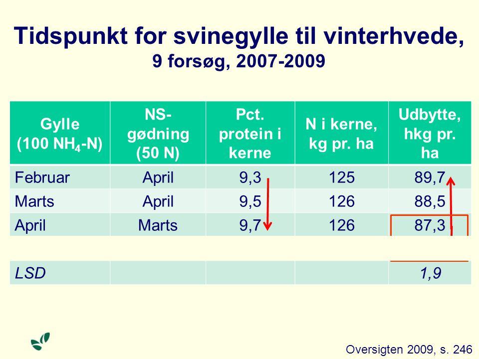 Tidspunkt for svinegylle til vinterhvede, 9 forsøg, 2007-2009