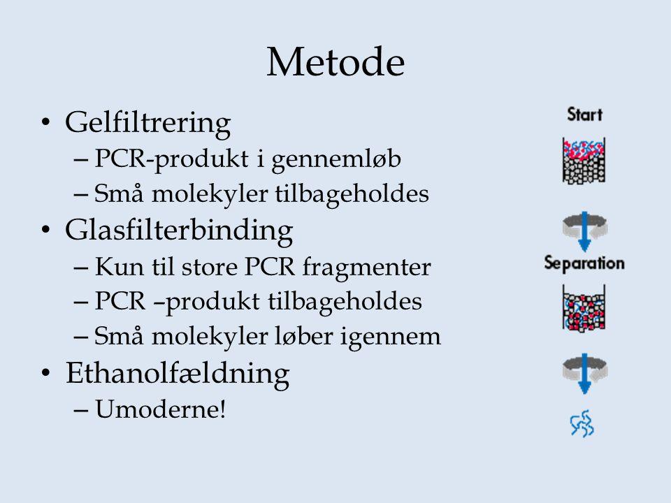 Metode Gelfiltrering Glasfilterbinding Ethanolfældning
