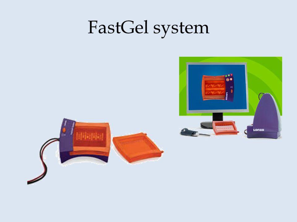 FastGel system