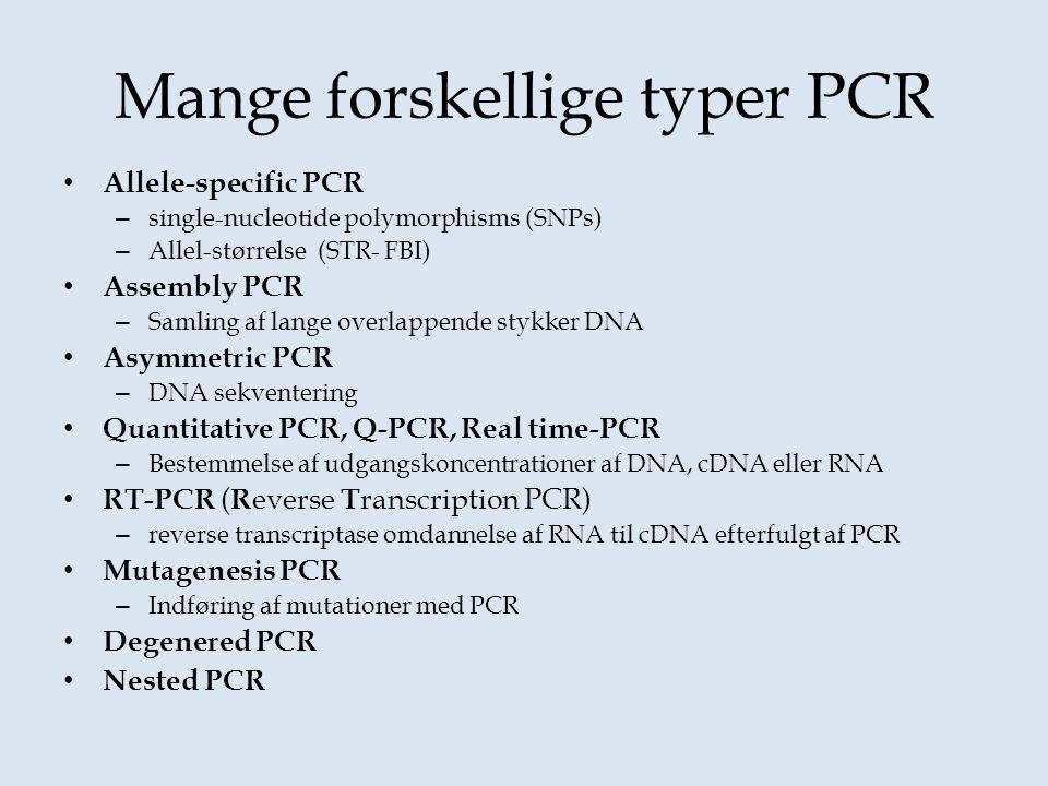 Mange forskellige typer PCR