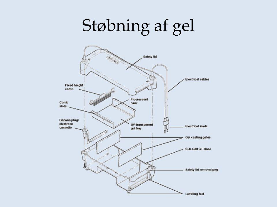 Støbning af gel