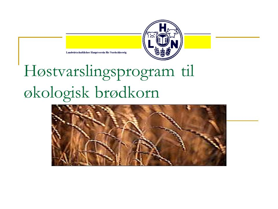 Høstvarslingsprogram til økologisk brødkorn