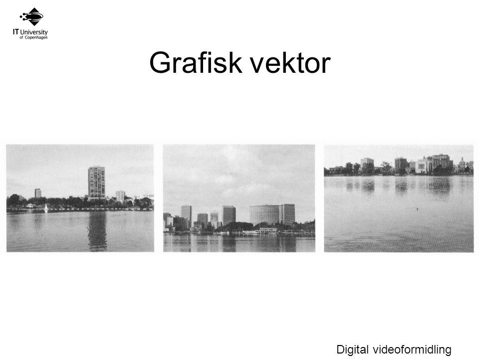 Grafisk vektor