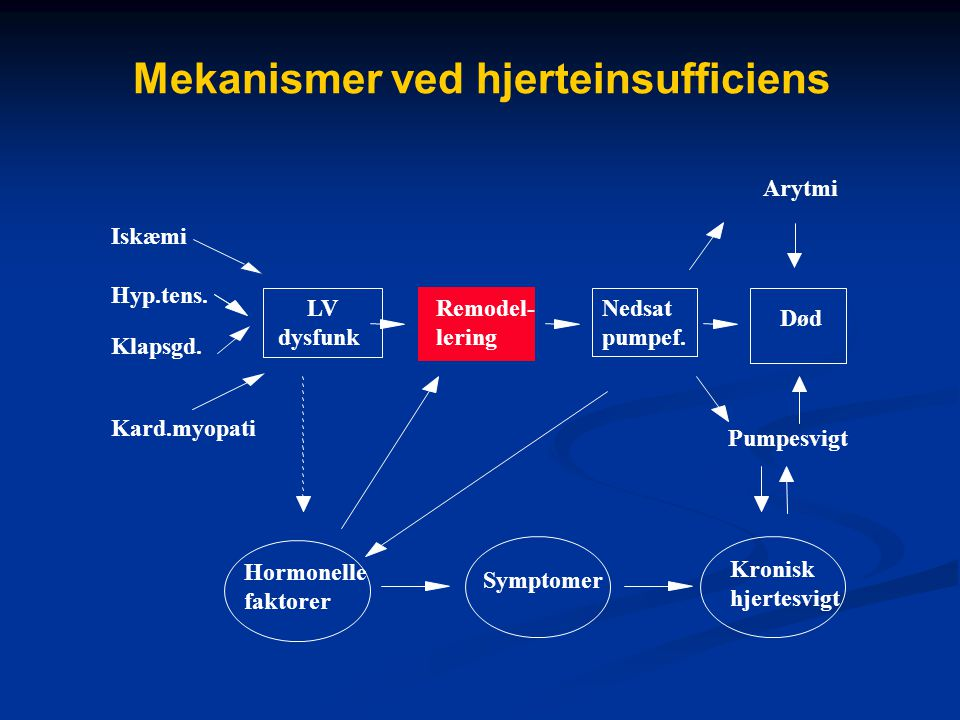 Mekanismer ved hjerteinsufficiens