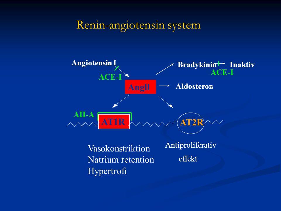 Renin-angiotensin system