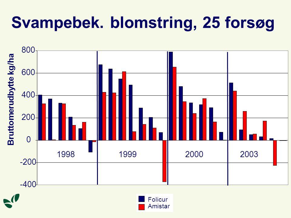 Svampebek. blomstring, 25 forsøg