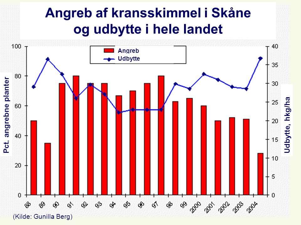 Angreb af kransskimmel i Skåne og udbytte i hele landet