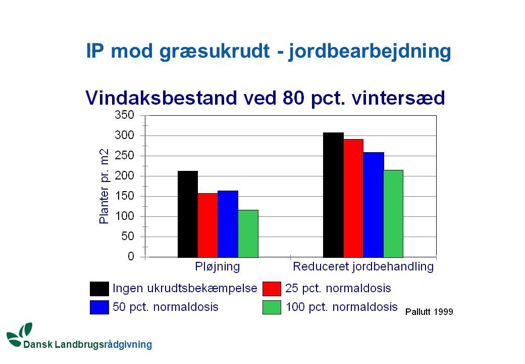 IP mod græsukrudt - jordbearbejdning
