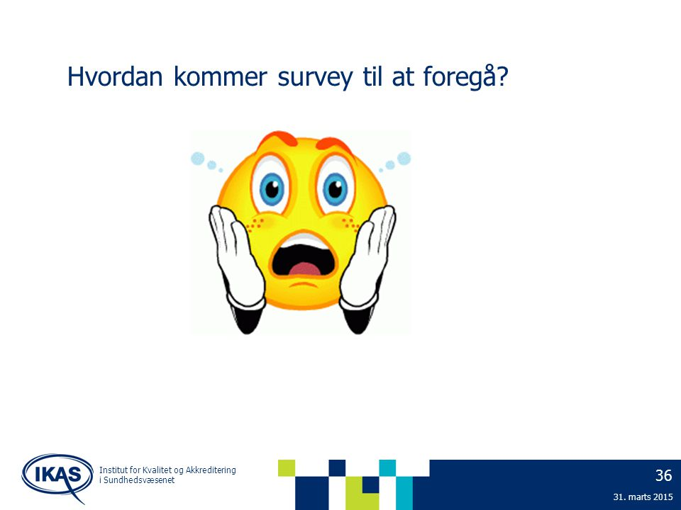 Hvordan kommer survey til at foregå