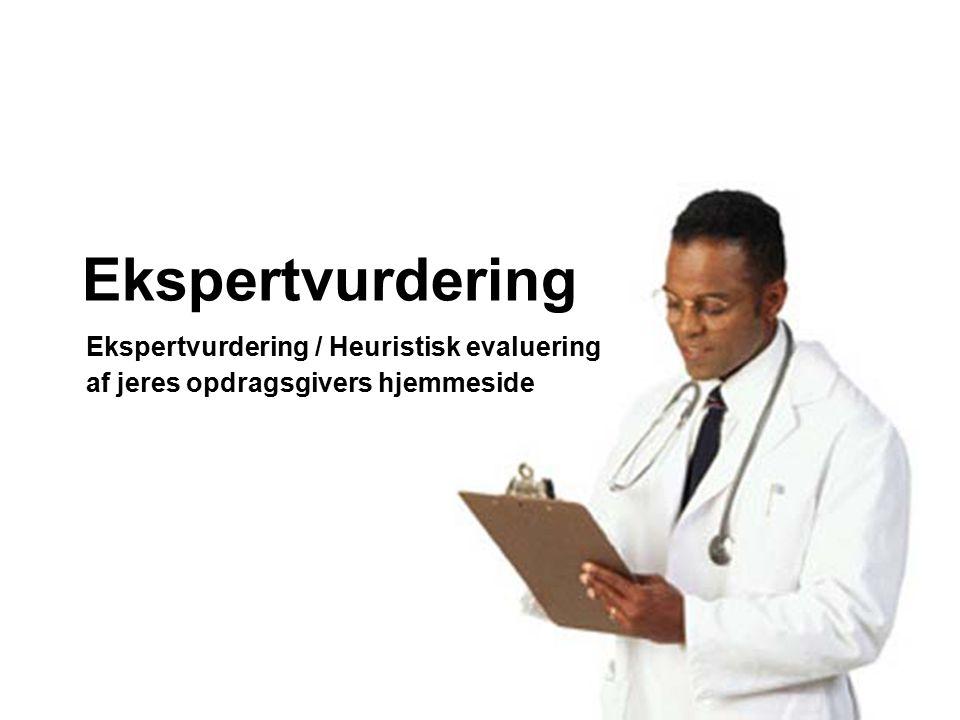 Ekspertvurdering Ekspertvurdering / Heuristisk evaluering
