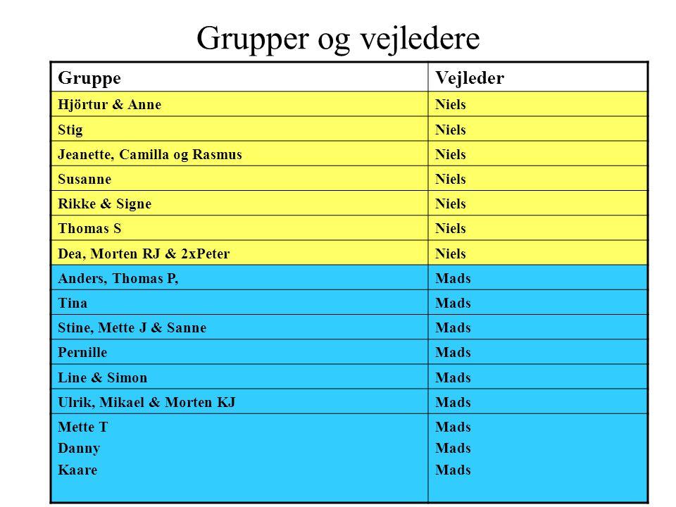 Grupper og vejledere Gruppe Vejleder Hjörtur & Anne Niels Stig