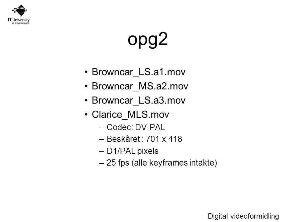 opg2 Browncar_LS.a1.mov Browncar_MS.a2.mov Browncar_LS.a3.mov