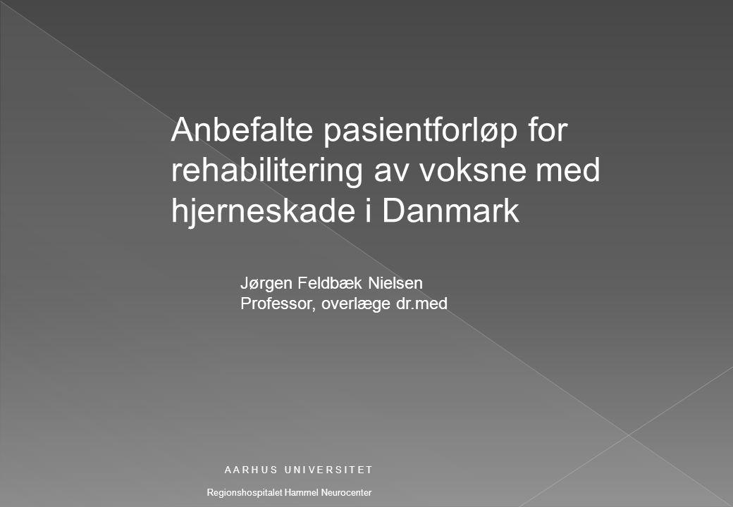 Anbefalte pasientforløp for rehabilitering av voksne med hjerneskade i Danmark