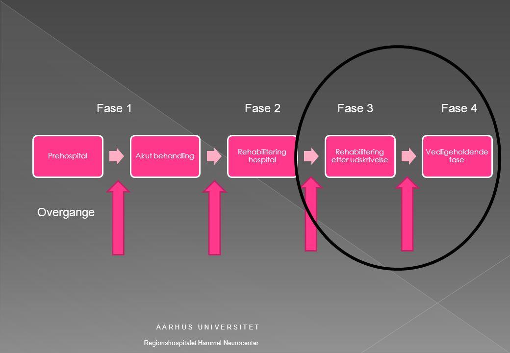 Fase 1 Fase 2 Fase 3 Fase 4 Overgange