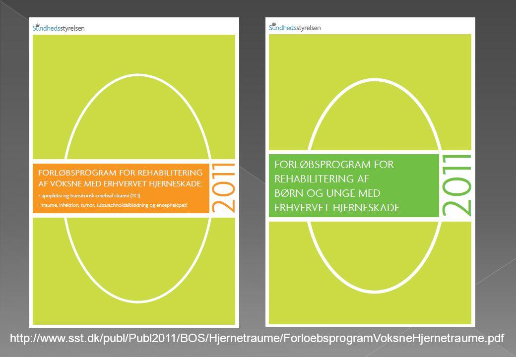 http://www.sst.dk/publ/Publ2011/BOS/Hjernetraume/ForloebsprogramVoksneHjernetraume.pdf