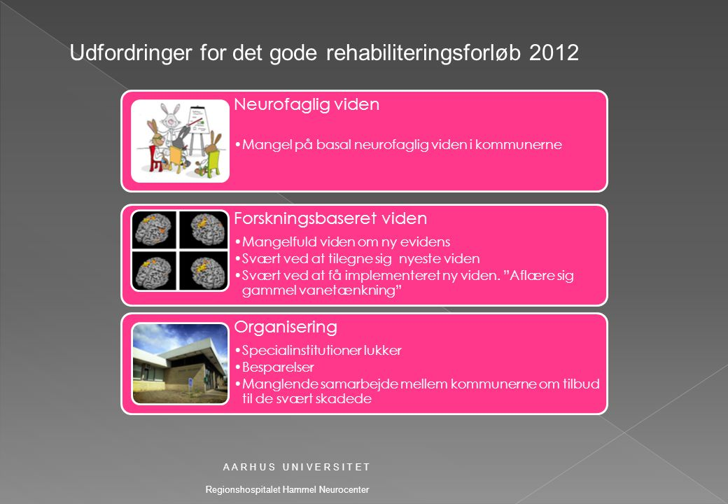Udfordringer for det gode rehabiliteringsforløb 2012