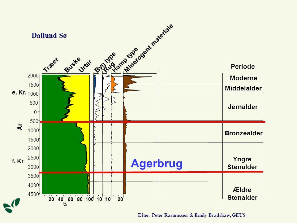 Agerbrug Dallund Sø Minerogent materiale Hamp type Byg type Træer