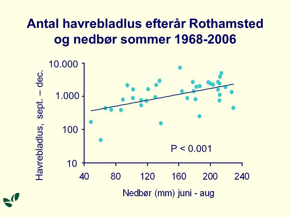 Antal havrebladlus efterår Rothamsted