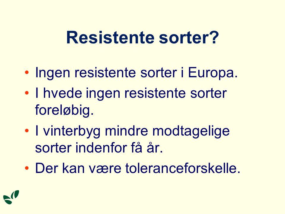 Resistente sorter Ingen resistente sorter i Europa.