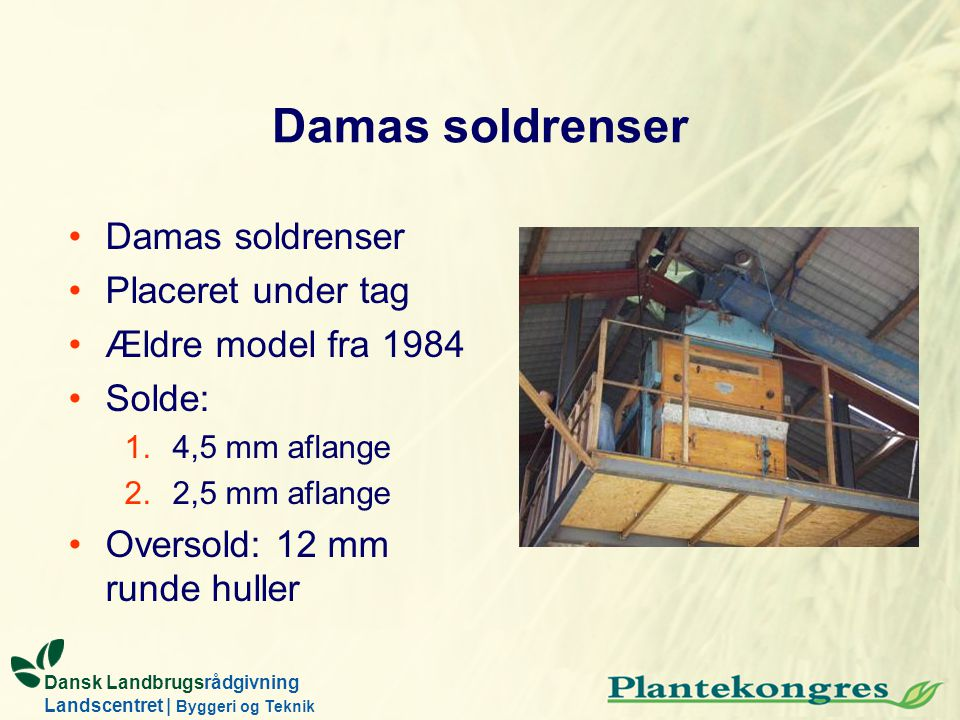Damas soldrenser Damas soldrenser Placeret under tag