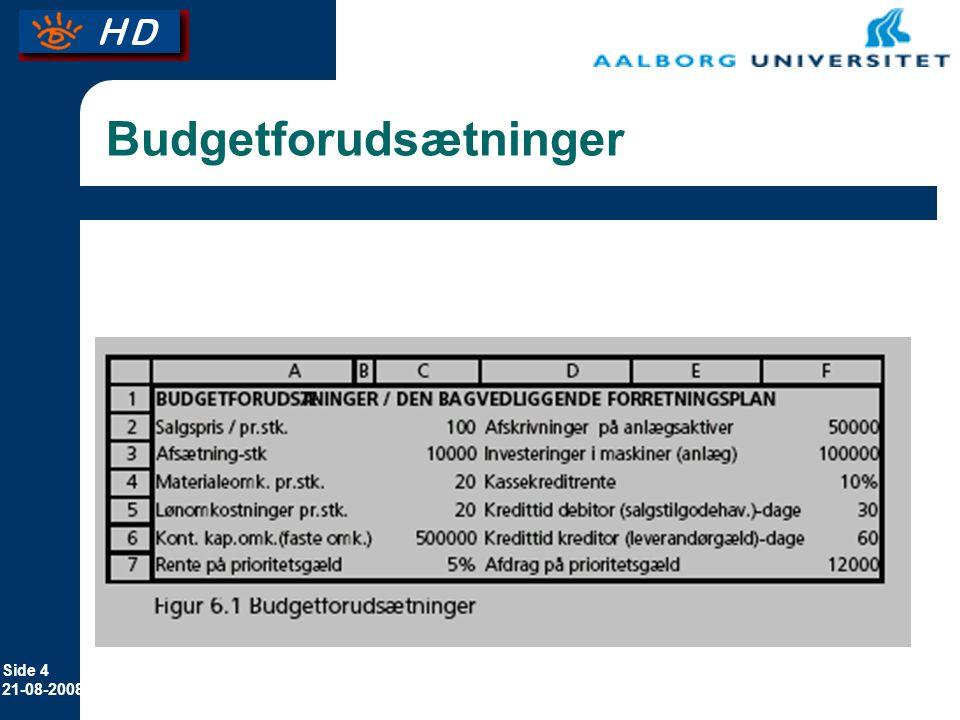 Budgetforudsætninger