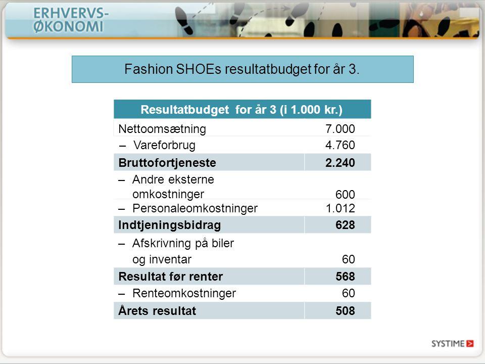Resultatbudget for år 3 (i 1.000 kr.)