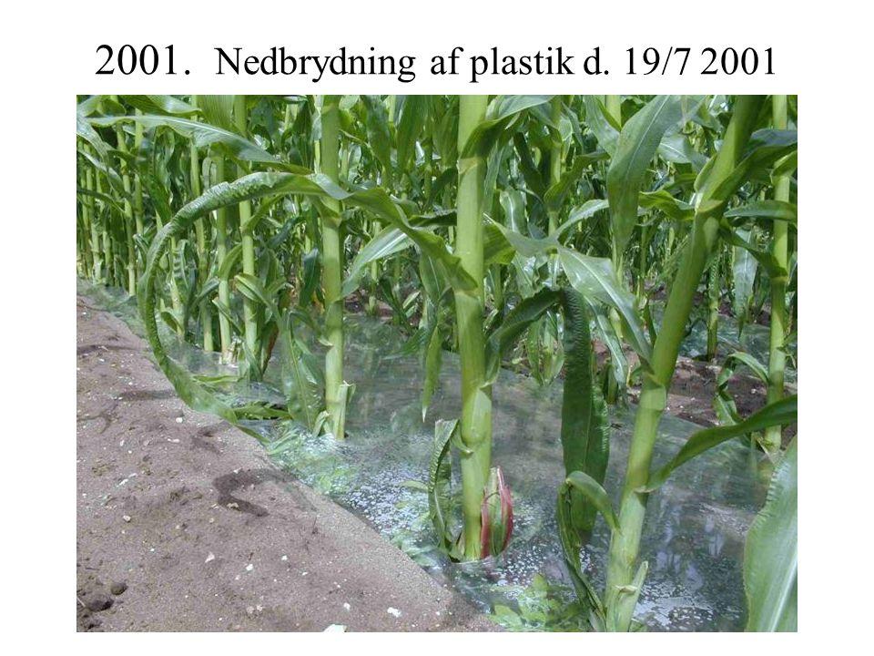 2001. Nedbrydning af plastik d. 19/7 2001